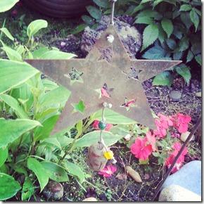 Garden star 7-28-12